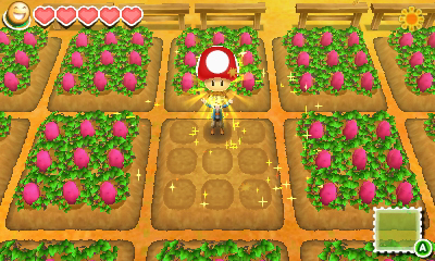 Story of seasons will be released at gamestop amazon and other